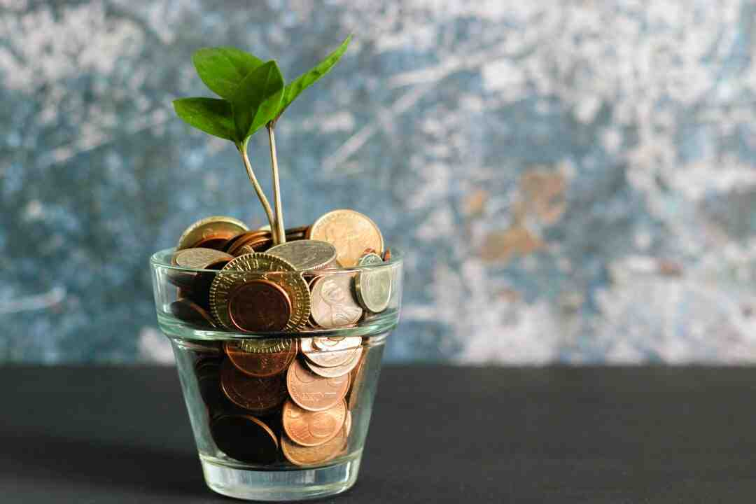 How manage your money